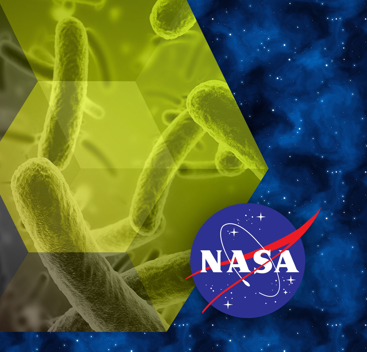 Center for the Utilization of Biological Engineering in Space