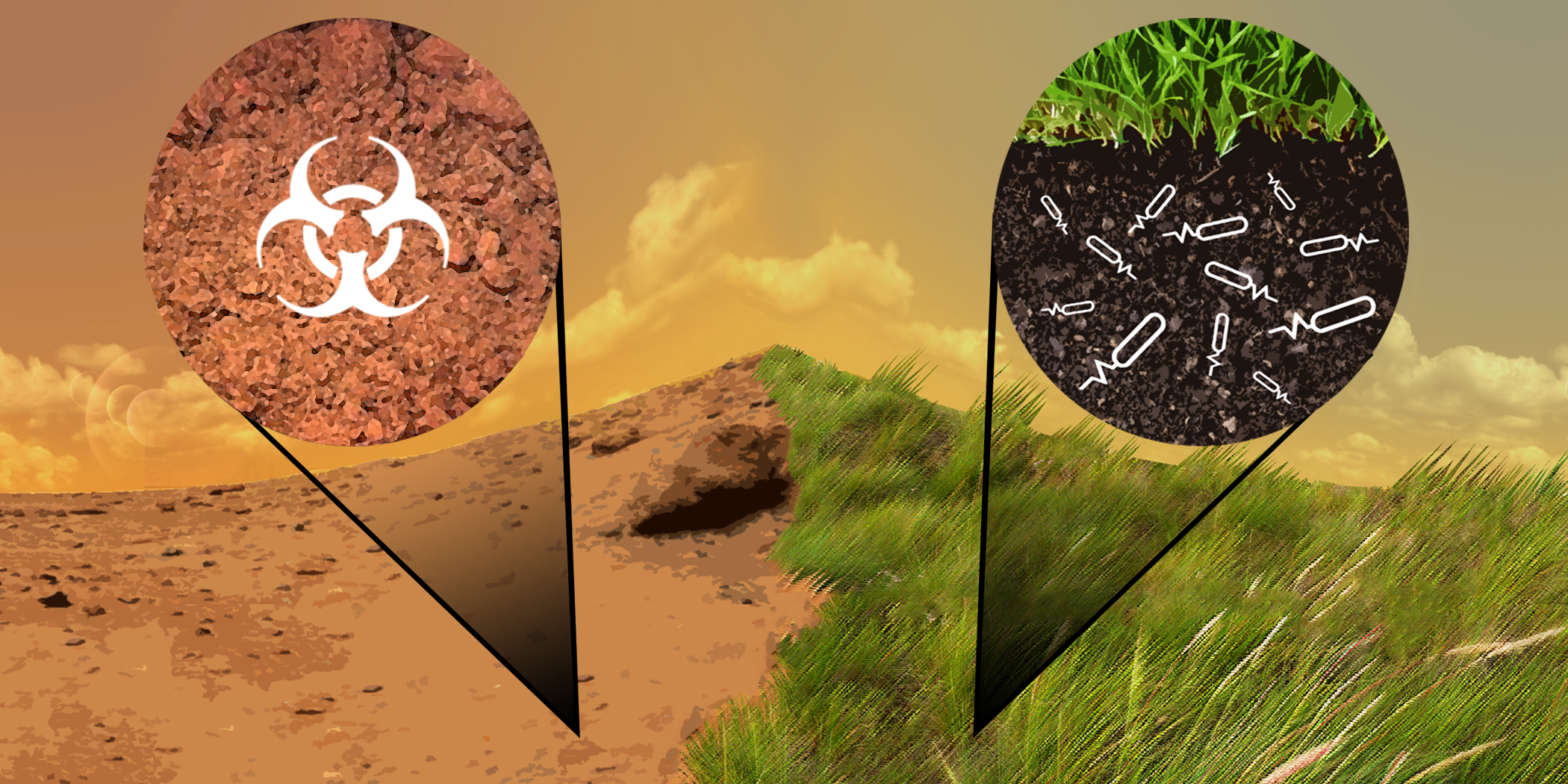 Enrichment of Martian Regolith to Useful Agricultural Soil